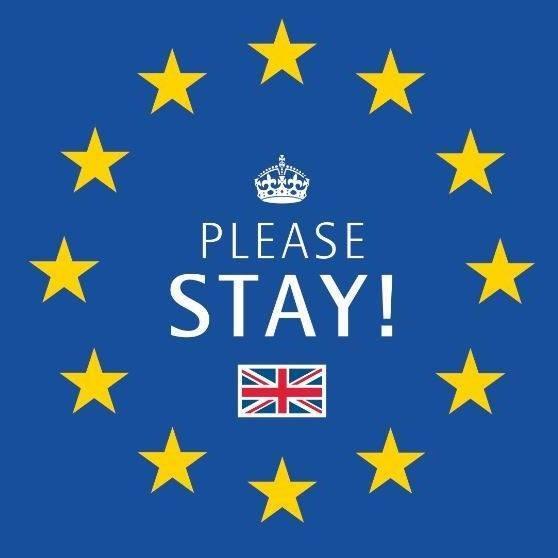 Exit Brexit – Please stay oder: Wie man als kleiner Unternehmer in der IHK Vollversammlung gehört wird